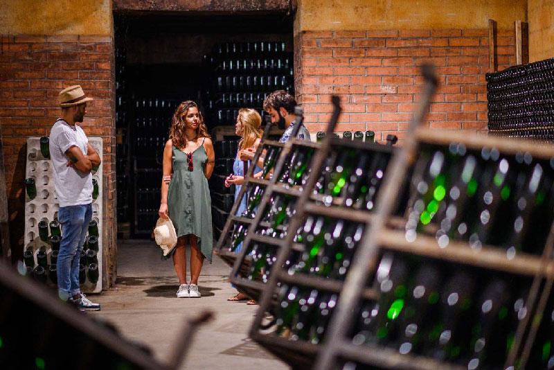 visite cave à vin serena