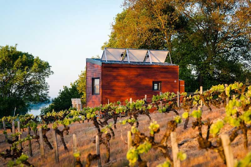 tiny house et vigne